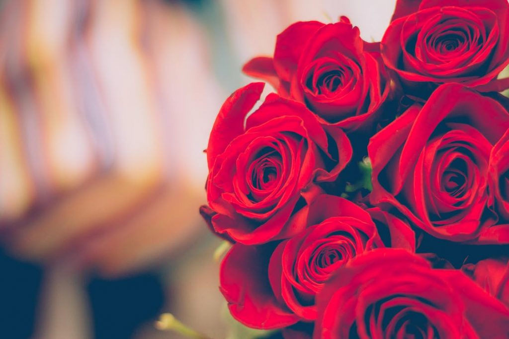 As per Greek mythology, Aphrodite- the Goddess of Love, created rose by mixing her tears and her lover Adonis's blood, when he got injured